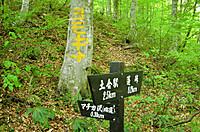 Yubisogawa_049