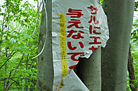 Yubisogawa_144