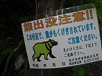 Haruna2011_084