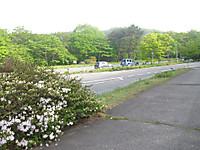 Haruna2011_137
