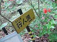 Haruna2011_259