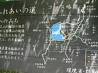 Haruna2011_300