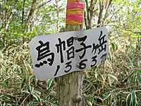 Haruna2011_477