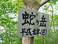 Haruna2011_514