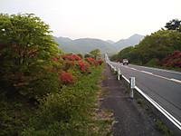 Haruna2011_544