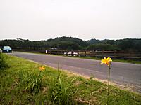 Pap_0003_2